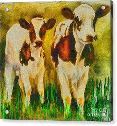 T Bone And Ribeye Acrylic Print by Elizabeth Coats