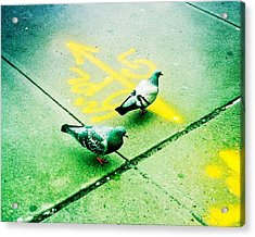 T-squared Doves Acrylic Print