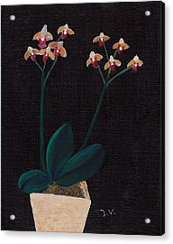 Table Orchid Acrylic Print by M Valeriano