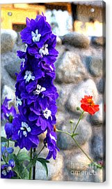 Acrylic Print featuring the photograph Tahoe City Flower by Anne Raczkowski