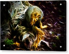 Take A Bow - Fractal - Robbie The Squirrel - Fractal Acrylic Print