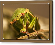 Acrylic Print featuring the digital art Take My Pic 01 by Kevin Chippindall
