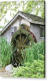 Tall Grass At The Mill Acrylic Print by Mike Lytle