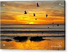 Tangerine Dream Acrylic Print
