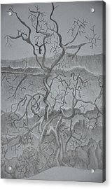Tangled Tree Of A Lonely Mind Acrylic Print
