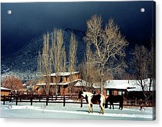 Taos Typical Acrylic Print by Ed Golden