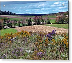 Acrylic Print featuring the photograph Tapestry by Christian Mattison