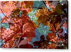 Tapestry Of Autumn 2 Acrylic Print by France Laliberte