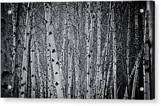 Acrylic Print featuring the photograph Tate Modern Trees by Lenny Carter