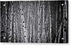 Tate Modern Trees Acrylic Print