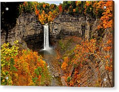 Taughannock Falls  Sate Park  New York  Acrylic Print by Puzzles Shum