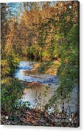 Tawawa Creek Acrylic Print by Pamela Baker