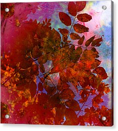 Tears Of Leaf  Acrylic Print by Jerry Cordeiro