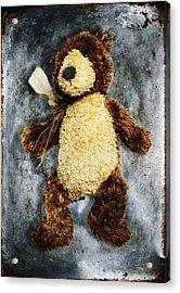 Teddy Bear Acrylic Print by Skip Nall