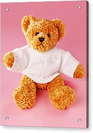 Teddy Bear Acrylic Print by Terry Mccormick
