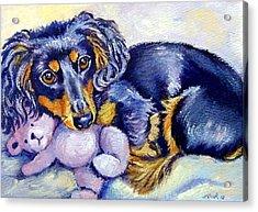 Teddy Cuddles - Dachshund Acrylic Print by Lyn Cook