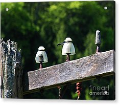 Acrylic Print featuring the photograph Telephone Pole And Insulators by Sherman Perry