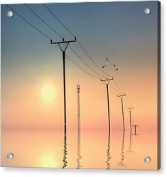 Telephone Post At Sunset Acrylic Print by Kurtmartin