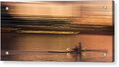 Tempe Town Lake Rowers Abstract Acrylic Print by Dave Dilli