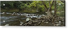 Tennessee Stream Panorama 6045 6 Acrylic Print by Michael Peychich