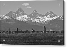 Acrylic Print featuring the photograph Tetonia Grain Elevators by Eric Tressler