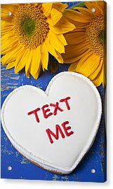 Text Me Acrylic Print by Garry Gay