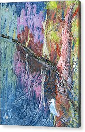 Texture Of Nature 1 Acrylic Print by Warren Thompson