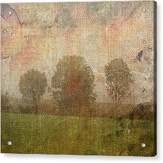 Textured Trees Acrylic Print by Roni Chastain