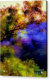 That Mountain Light Acrylic Print by Judi Bagwell