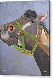 That's Mr. Tazz To You Acrylic Print by Krista Ouellette