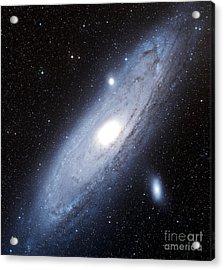 The Andromeda Galaxy Acrylic Print by Charles Shahar
