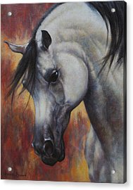 Acrylic Print featuring the painting The Arabian by Harvie Brown