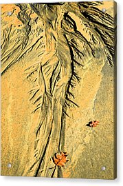 The Art Of Beach Sand Acrylic Print by Marcia Lee Jones