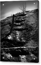 The Ascent Acrylic Print