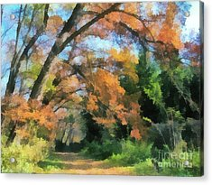 The Autumn Forest Acrylic Print by Odon Czintos