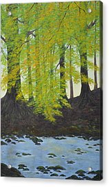 The Autumn Glen Acrylic Print