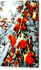 Acrylic Print featuring the photograph The Autumn Leaves And Winter Snow by Steve Taylor