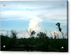 Acrylic Print featuring the photograph The Back Forty by Lon Casler Bixby