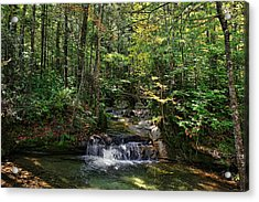 The Basin Acrylic Print by Lanis Rossi