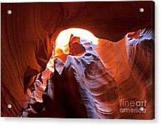 Acrylic Print featuring the photograph The Bear by Bob and Nancy Kendrick