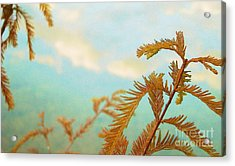 The Beauty Of Weeds Acrylic Print by Steven Lebron Langston