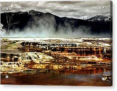 The Beauty Of Yellowstone Acrylic Print by Ellen Heaverlo