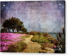 The Beckoning Path Acrylic Print