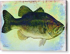 The Big Fish Acrylic Print by Bill Cannon