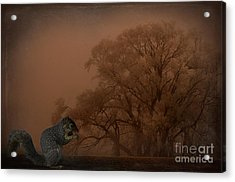 The Big Woods Acrylic Print by The Stone Age