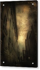 The Birds Acrylic Print by Peter Labrosse