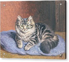 The Blue Cushion Acrylic Print by Horatio Henry Couldery