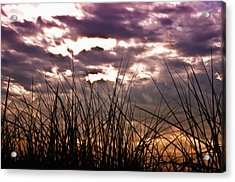 The Brewing Storm Acrylic Print by Bill Cannon