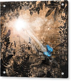 The Butterfly That Thought It Was A Moth Acrylic Print by Carly Ralph