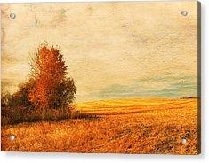 The Careful Breeze  Acrylic Print by Jerry Cordeiro